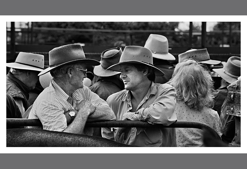 LAST OF THE CATTLE SALES02