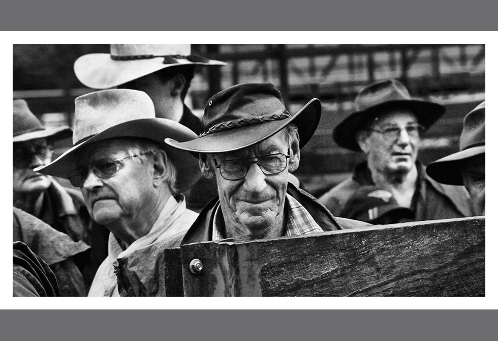 LAST OF THE CATTLE SALES03