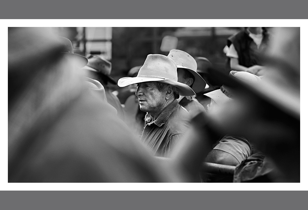 LAST OF THE CATTLE SALES04