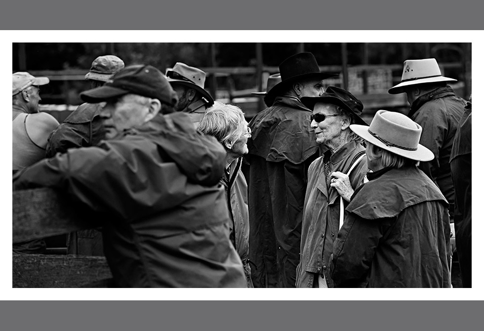 LAST OF THE CATTLE SALES06